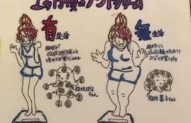 筋膜リリース フロッカ 姫路